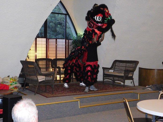 Chinese lion dragon