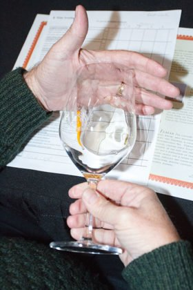Judges checking wine clarity