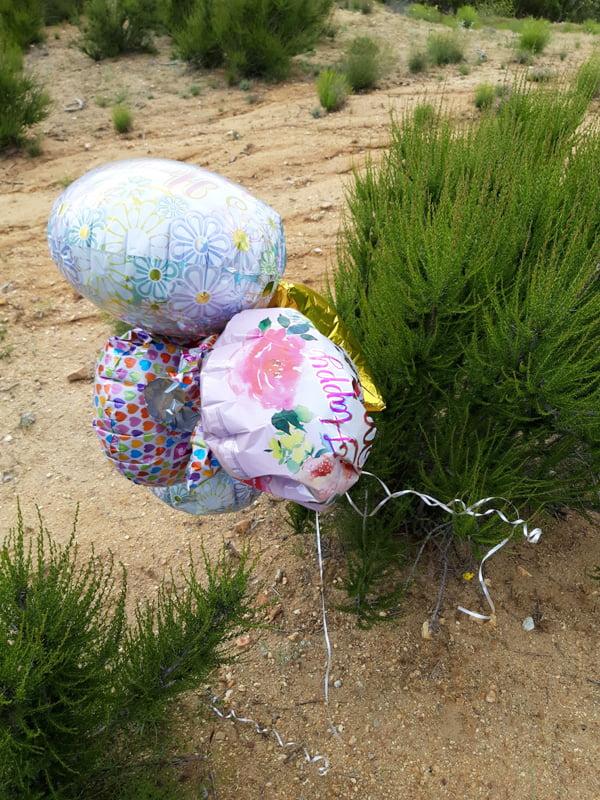 three balloons tied to a small tree