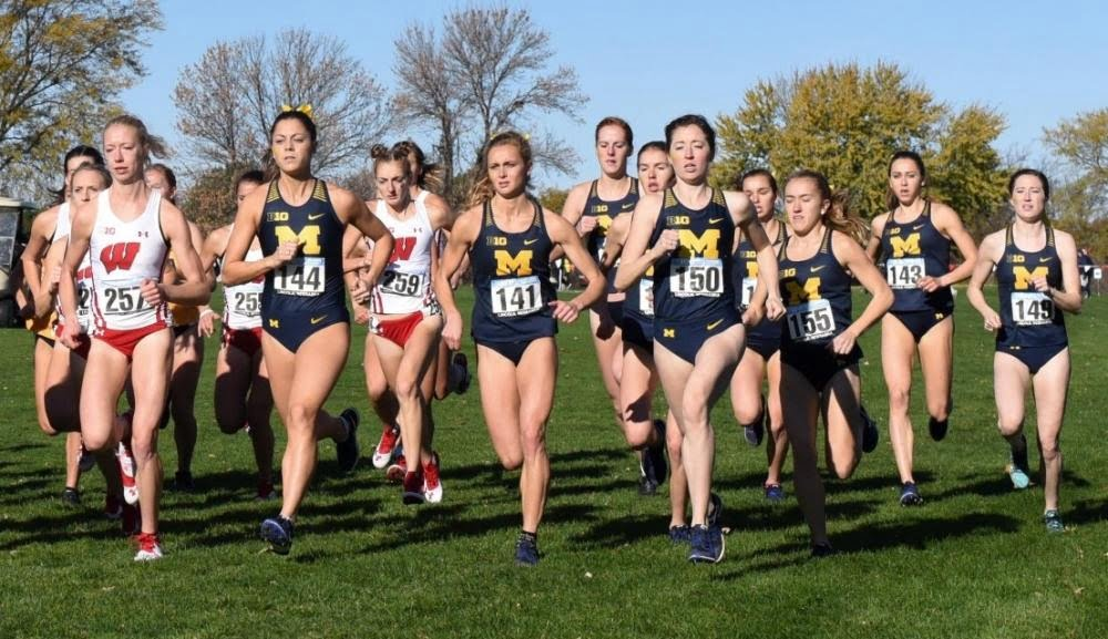 Cross country team closes season with historic meet